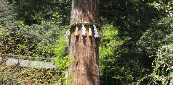 Shinto spirituality