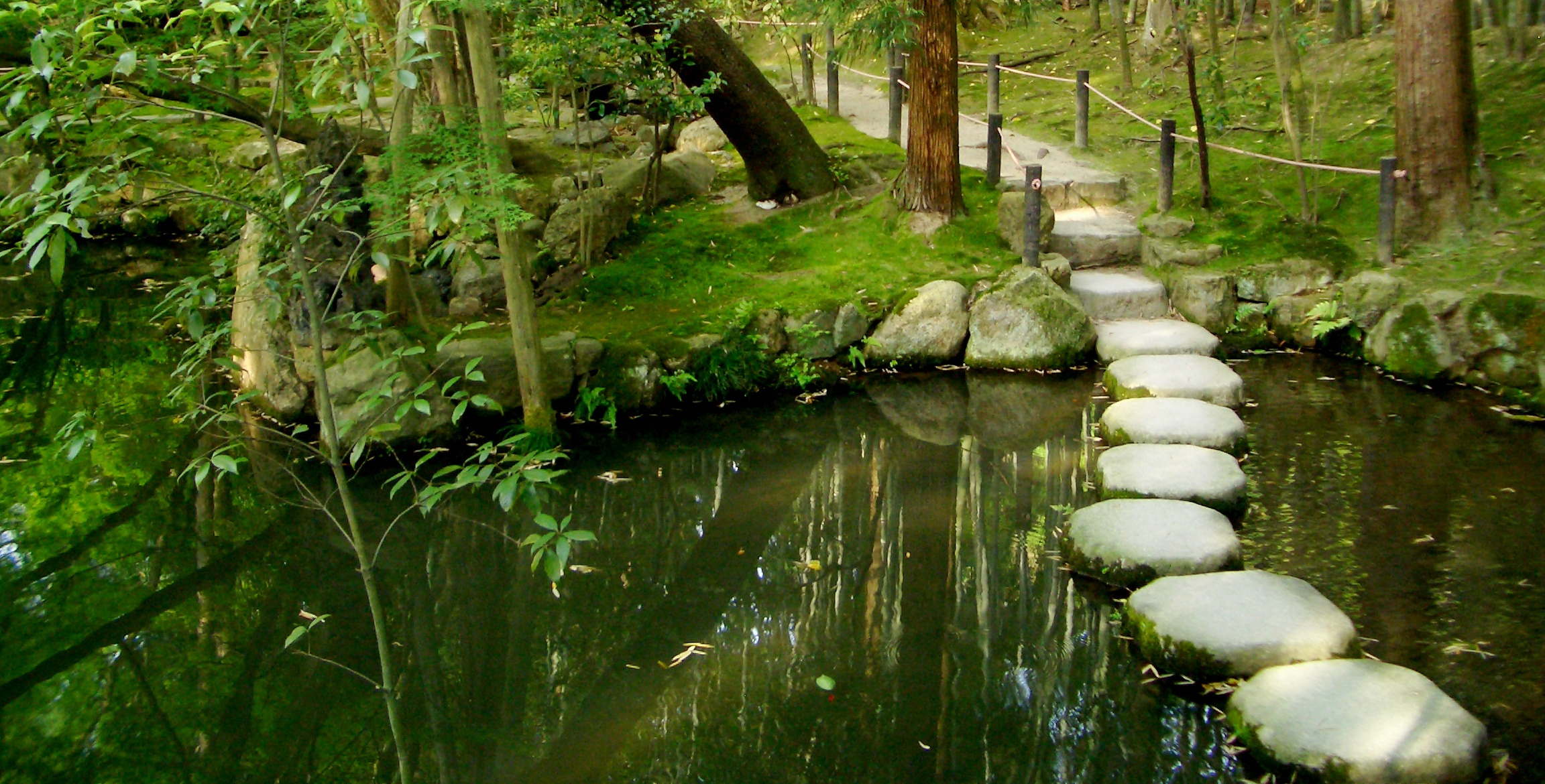 Well how did i get into reiki reiki journey part ii for Japanese garden water